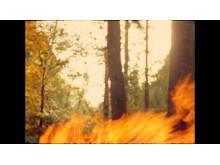 FIRE WORKS. Huarmi Cermamista, film om Quichuaindianernas keramiktradition. Kristine Tillge Lund. (bild nr 1)