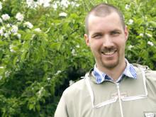 Biodlaren Martin Svensson från företaget Binära sätter ut bin på Kiviks musteri.