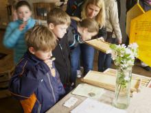 Besökare på Äpplets Hus på Kiviks musteri luktar och smakar på bivax och honung.