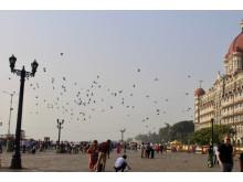Sør-India
