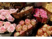 Fairtrade-märkta rosor