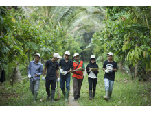 youth on cocoa sector_0522