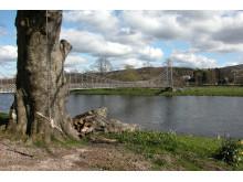 Moray Footbridge over the Spey