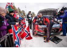 Paddon Rally Sweden 2016 - 1