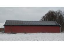 Solceller allt populärare inom lantbruket