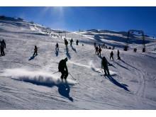 Skidort