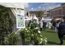 Lisebergs trädgårdsdagar