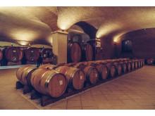 wine_cellar_Valentina_Cubi_oak_barrels