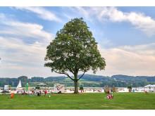 Kemnader See, Bochum/Hattingen/Witten