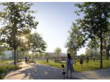 Den nya detaljplanen kommer att bidra med mycket välbehövlig grönska i området.