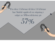 Salget av SM-sexleketøy