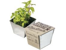Inspiration till vårens odling - Foodie odlingskit