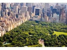 USA New York and Cenrtal Park view
