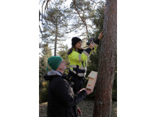 Montering pågår med Anders och Andrea från Botkyrkabyggen