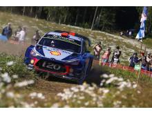 Dani Sordo - Rally Finland