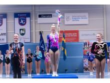 SM 2017 Aerobic Gymnastics