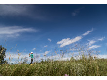 Golf Ljusnedal