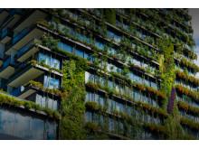 Vertikala grönområden
