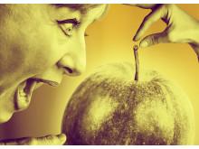 Äppelkriget