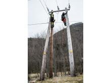 Feltarbeidere fra Årdal Energi Nett ute på oppdrag