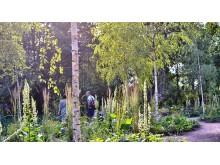 Lövsalen på Astrid Lindgrens Näs