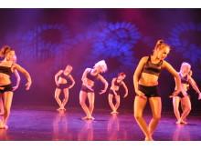 Nya dansprofiler Carlforsska - Klassisk modern profil