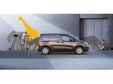Opel_503410