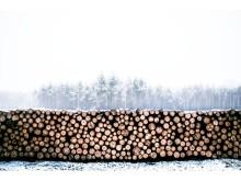 Ny timmerterminal i Midt-Telemark