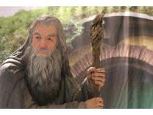 Gandalf tæt på