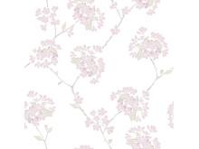 379-01 Körsbär