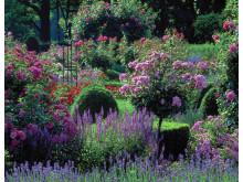 Odlningtorn gör vilken trädgård som helst till ett paradis
