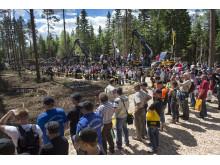 Laddat för skogsfest