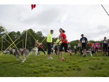Hundlöpet - Sveriges hundvänligaste motionslopp
