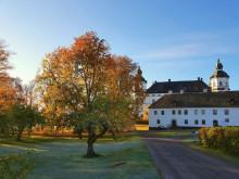 Skoklosters slott Höstlov_frost och guld
