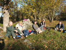 Röjning i Gredelby hagar och Trunsta träsk i Knivsta kommun