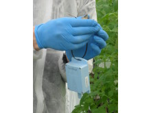 Fjärrmätning i växthus