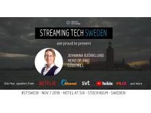 stswe18-speaker-codemill
