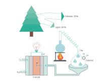 Schematisk beskrivning av den supergröna bränslecellen