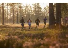 7000 löpare till Vasaloppsarenan lördag 20 augusti 2016