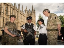 The Commissioner at the Palace of Westminster today (24 May)
