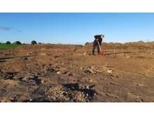 Udgravning ved Muningård. Kredit ROMU