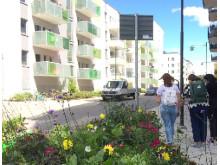 Bostäder i Barkarbystaden