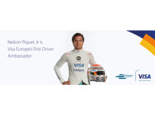 Nelson Piquet Jr - Annual Results