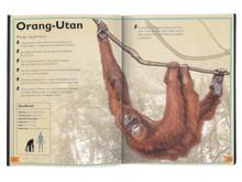 Das Riesenbuch der Wilden Tiere - Innenseite 2