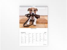 Seinäkalenteri 2019 koira