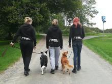 Elever från Realgymnasiet på hundpatrulls-veckan