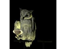 Oracles, Owls... Some Animals Never Sleep av Ann Lislegaard (2012–2014)