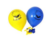 Ballonger - Grattis till Examen (10-pack)