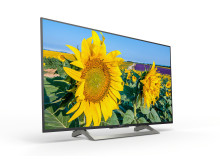XF80 Series 4K HDR TV