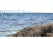 View of the Öresund Bridge at Mynewsdesk's Mynewsday event in Malmö, Sweden